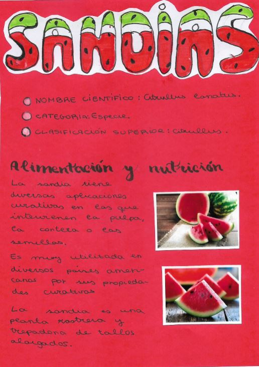 NUTRICIÓN Y HÁBITOS SALUDABLES, LA SANDÍA